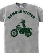 Rambunctious