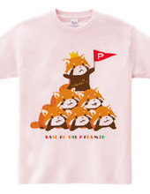 RED PANDA PYRAMID