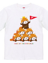 RED PANDA パンダの組み体操 まろ眉