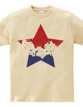 SIMPLE STAR (tricolor)