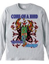 CORE OF A BIRD