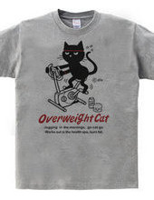 フィットネスバイクと猫