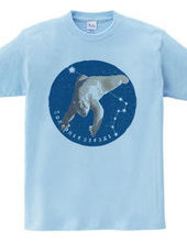 polarstar-bear B