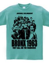 BRONX 1963