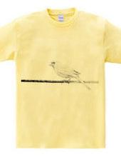 電線にとまる鳥