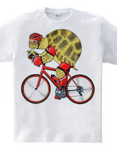 Cyclist of the tortoise