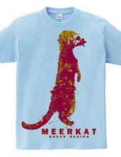 meerkat 03