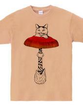 タマゴダケ猫