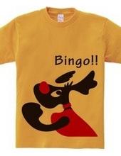 Black Labrador_Bingo!!