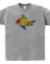 GLISTEN FISH