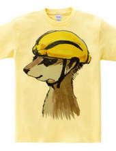 Meerkat wearing Lemon helmet