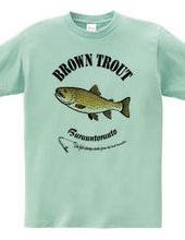 BROWN TROUT_6_C_iP