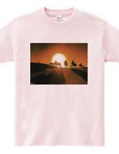 太陽の砂漠、ラクダの影夕景