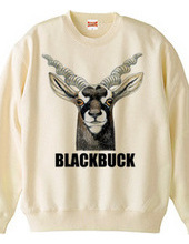BLACKBUCK ブラックバック