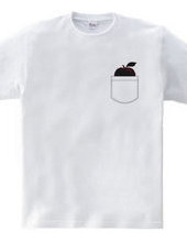 ポケットのリンゴ