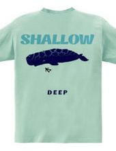SHALLOW / DEEP