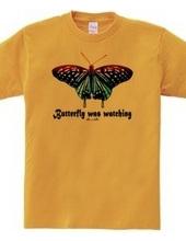 蝶々は見ていた