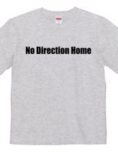 No Direction Home