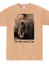 On the road Cat 06