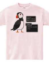 ドット絵パフィン(ニシツノメドリ)