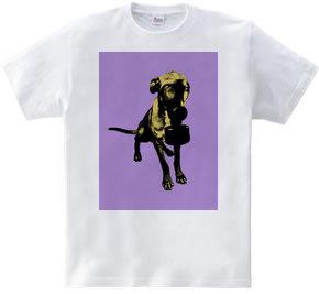 Collage Art Dog