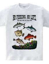 FISHING_S3_CF