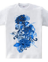 Cold_Roses