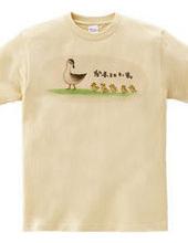 カルガモ親子【個性的で珍しいかわいいイラストデザインのオリジナルTシャツプリント