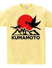 FOR KUMAMOTO