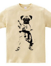 Pug is the best? Pug karate