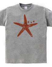 starfish 02