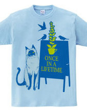 Once in a lifetime 02