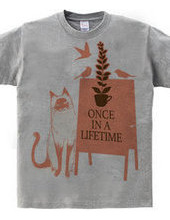 Once in a lifetime 03
