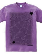 蜘蛛の巣T