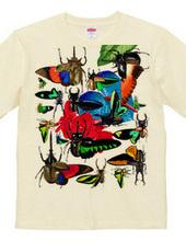 Tropical butterflies and beetles, beetle