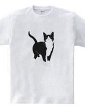 Tuxedo Cat / Square Monocrome