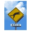 Traffic signs of Iriomote cat Back Print