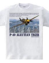 カーチス P-40