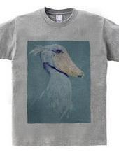 facebird