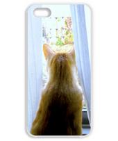 エルマウの「夏への扉」iPhone