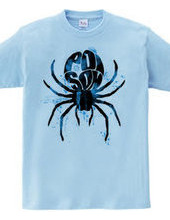 Poisonous spiders