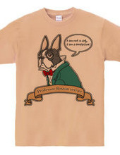 Word of the Professor, Boston Terrier