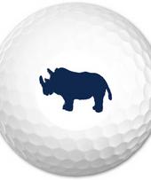 Zoo-Shirt | Valorous Rhino