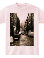 Alleyway in NY_tsbr01