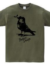 Sparrow 01
