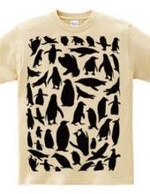 PenguinT