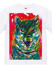 colorful shibainu T-shirts