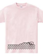Pig and brick