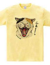 The yawning cat
