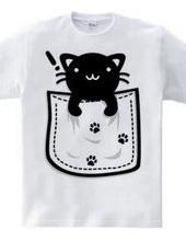 Cat_in_the_Pocket